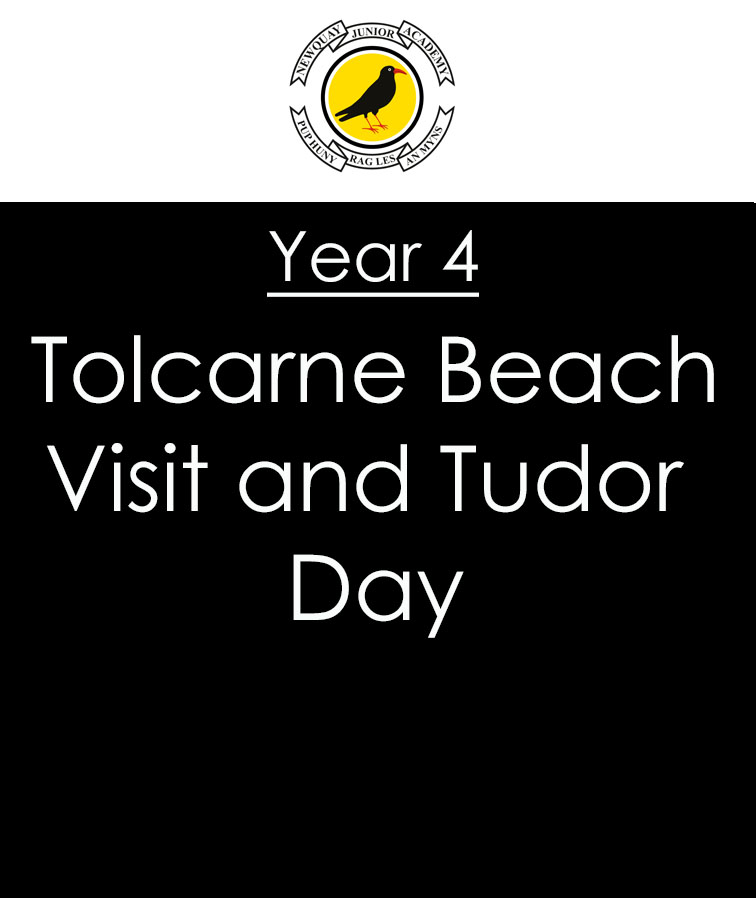 Year 4 Visit to Tolcarne Beach and Tudor Day