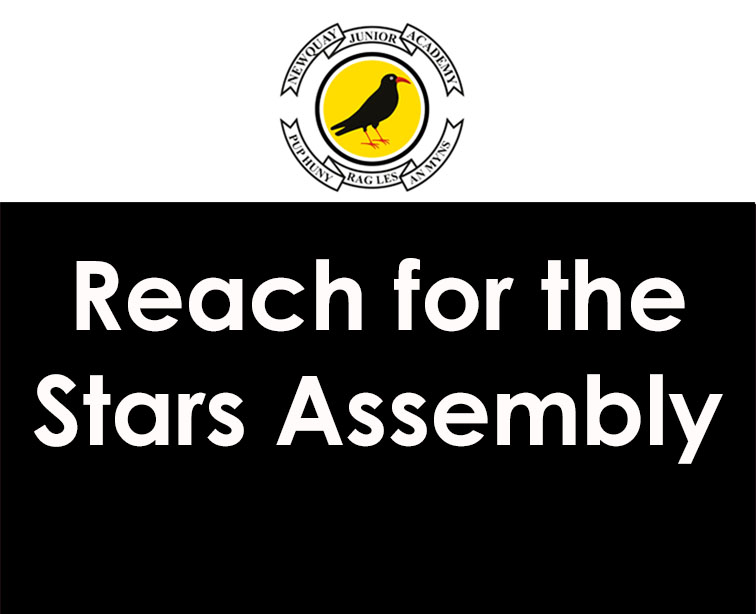 Reach for the Stars Assembly