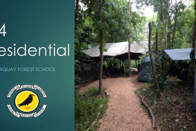 Year 4 Residential – Newquay Forest School