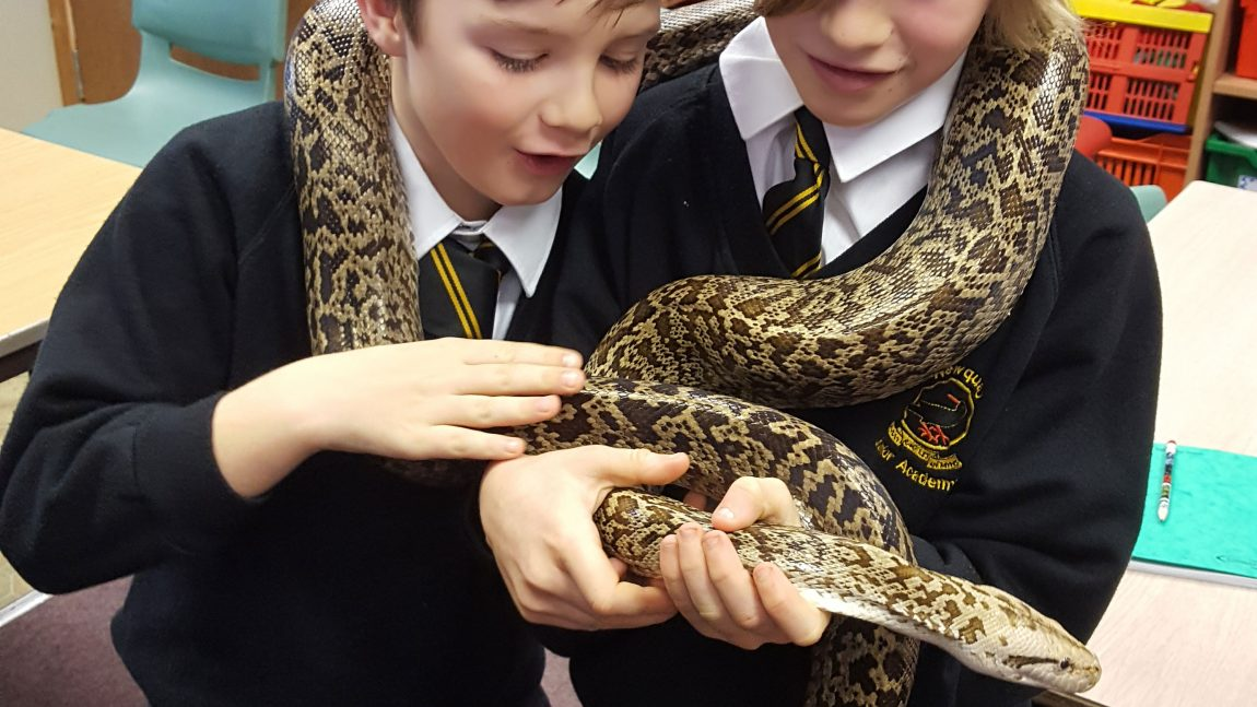 Year 4 Visitors