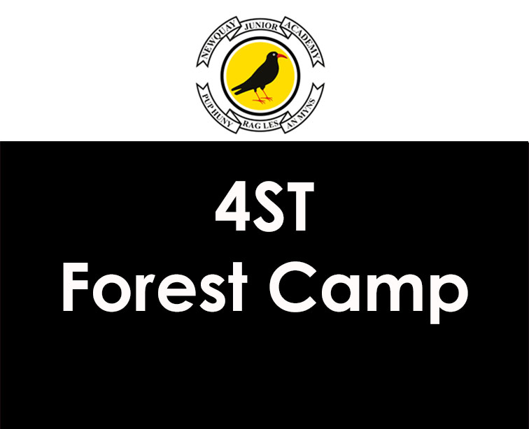 4ST Forest Camp
