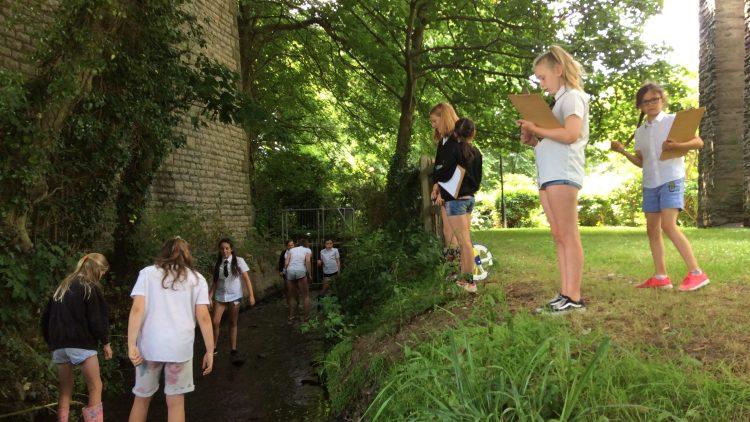 Trenance Gardens Stream