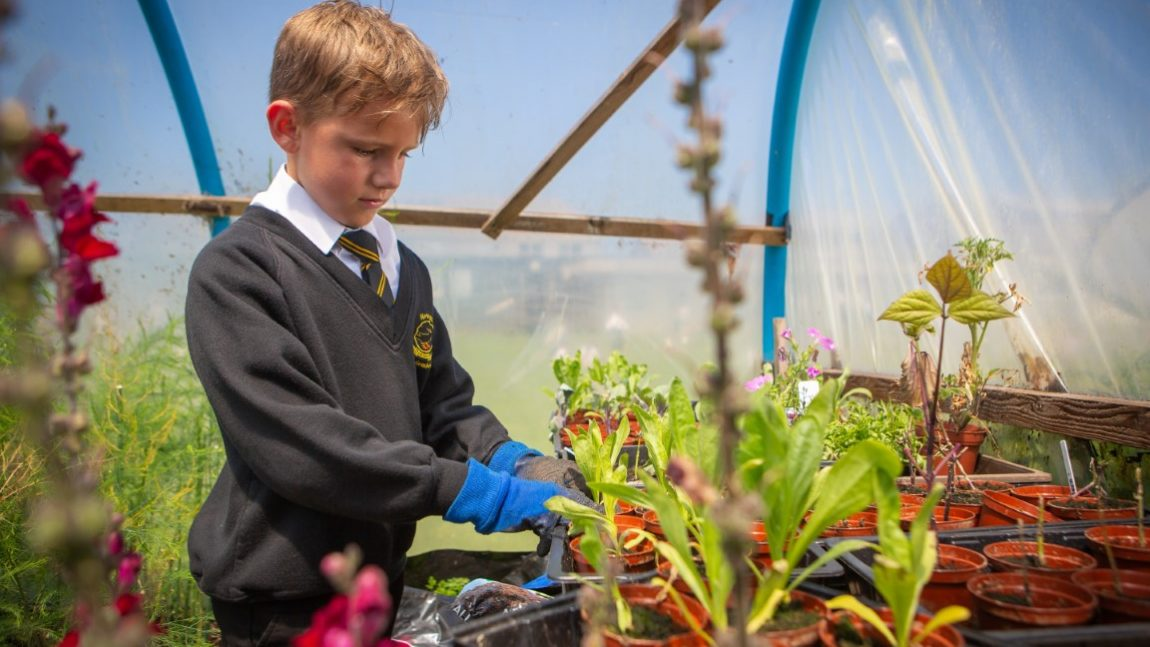 Poly Tunnel Competition