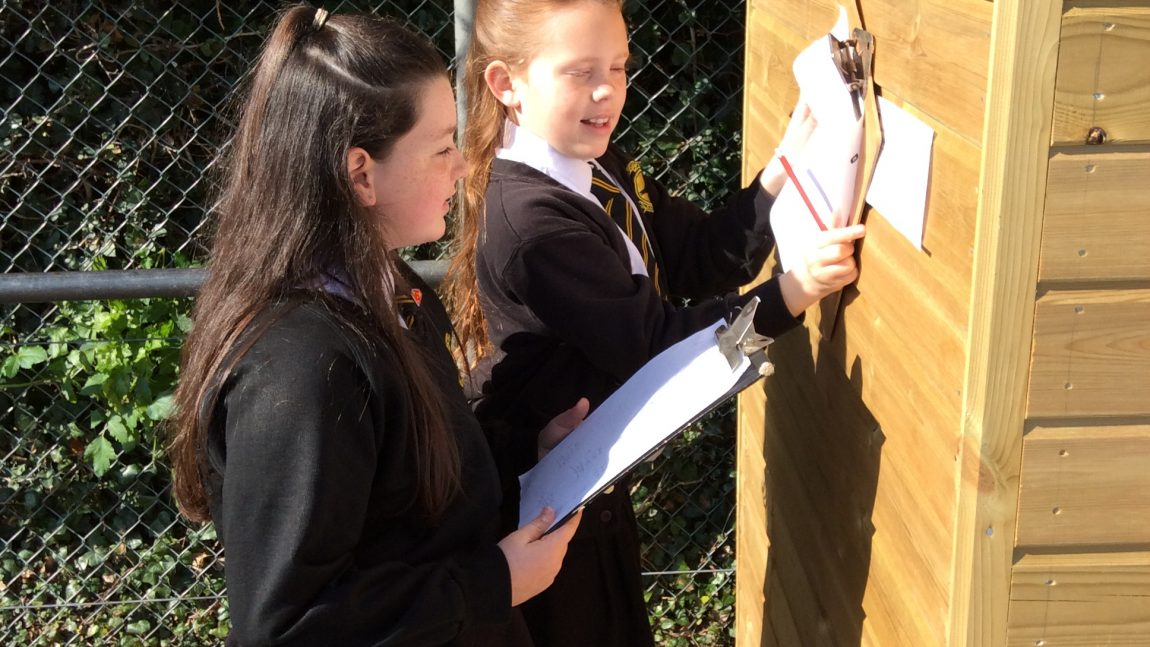 Maths Fun in the Sun – 6AP