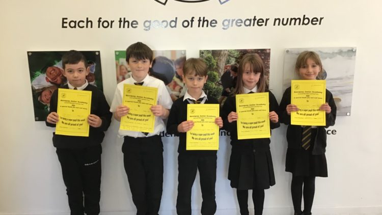 Yellow Certificate and Medal Winners – 27th November 2020