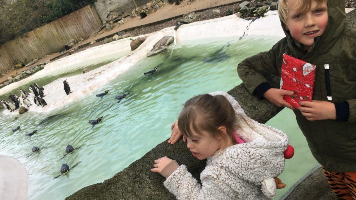 Year 3 – Christmas Zoo Trips